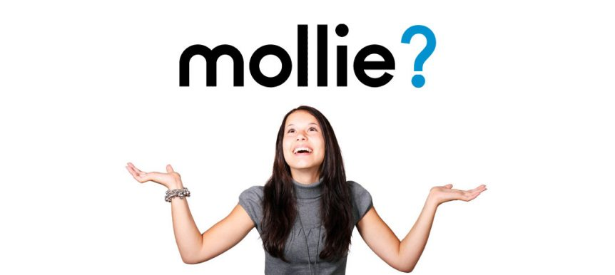 Wat is Mollie Payments?
